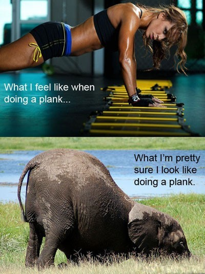 what-i-feel-like-doing-plank-what-i-look-like-funny-picture